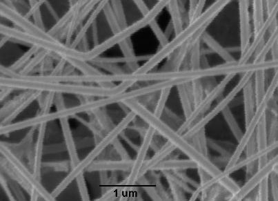 nanowires thesis
